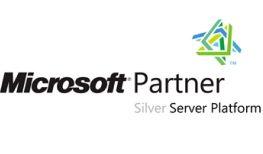 logo-microsoft-silver